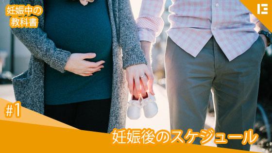 1_妊娠後のスケジュール